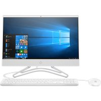 HP All-in-One 22-c0119ur